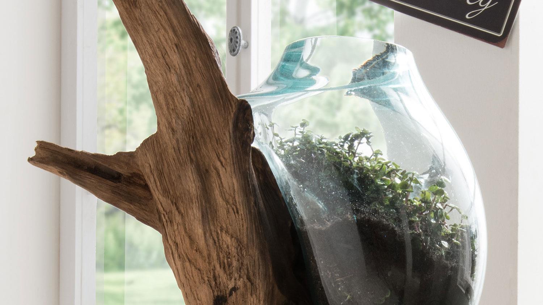 Unikat-Dekowurzel Teakholz mit Glas in Tropfenform 100 cm