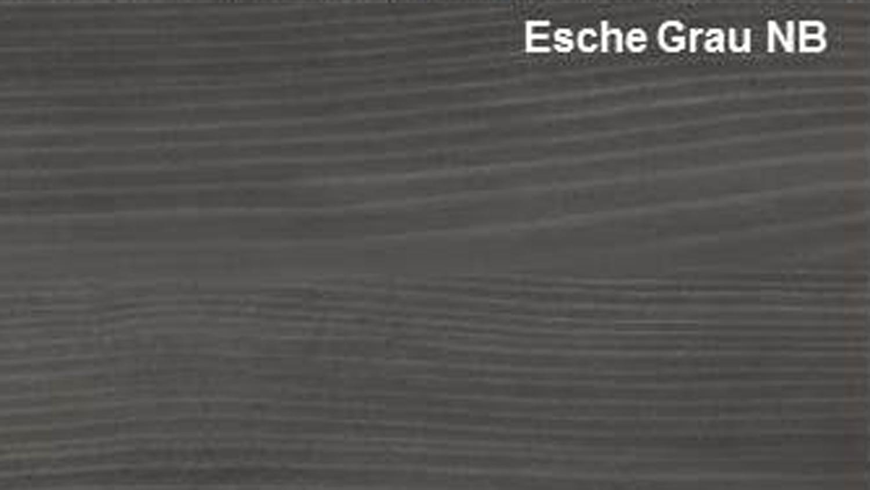Couchtisch UNIVERSAL in Esche grau Tisch mit Ablage