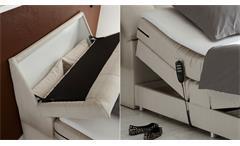 Boxspringbett Concort Bett in Stoff creme inkl. Motor und Topper 120x200 cm