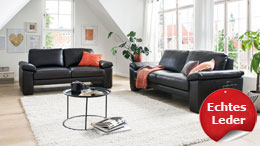 Garnitur MAGUS System Sofagarnitur Couch in Leder marron