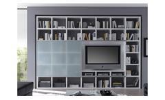 Wohnwand TORO 36 System weiß matt lackiert Glas satiniert