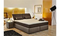 Boxspringbett VICTORIA Bett Schlafzimmerbett in elefant und braun 180x200
