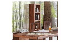 Raumteiler Guru 6683 Regal Bücherregal in Akazie massiv forest von Wolf Möbel