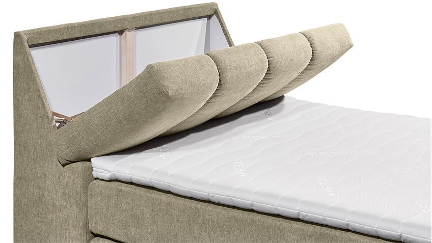 Boxspringbett TOLEDOS Bett schlamm beige Topper 120x200