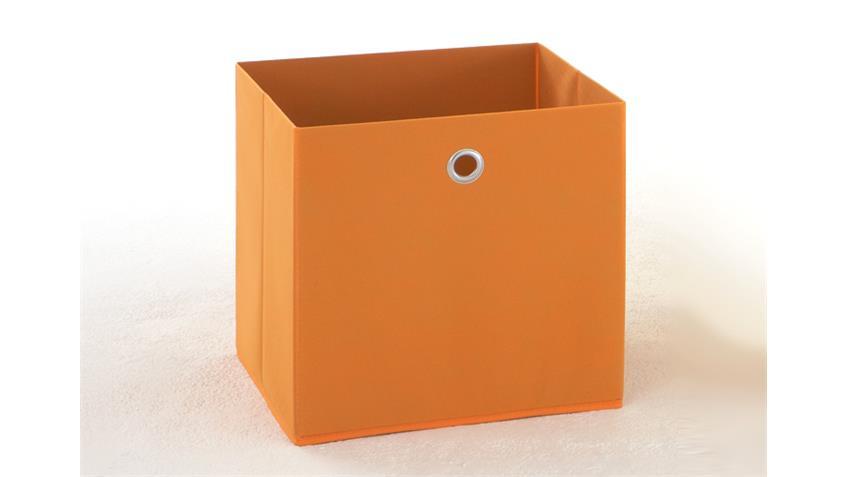 Faltbox 3er Set MEGA 3 Regalkorb in orange für Raumteiler