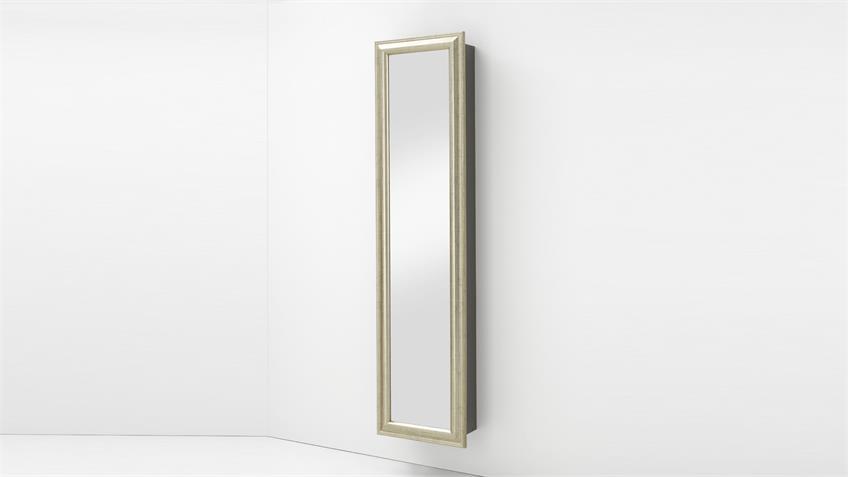 Vitrinenschrank TORA in bronze anthrazit mit Spiegeltür
