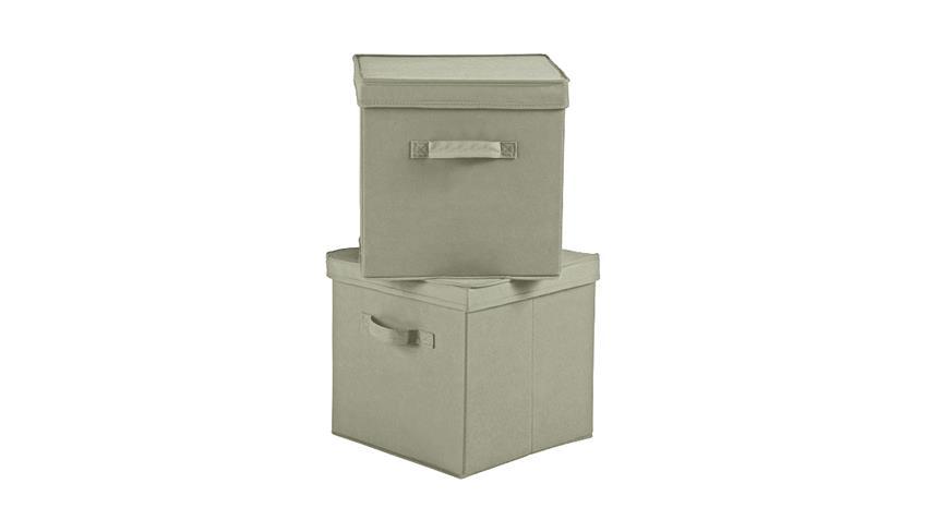Faltbox Flori 8 Aufbewahrungsbox 2er-Set Box beige