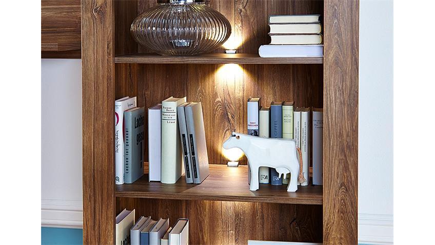 Regal GENT Standregal Bücherregal in Akazie dunkel inkl. LED
