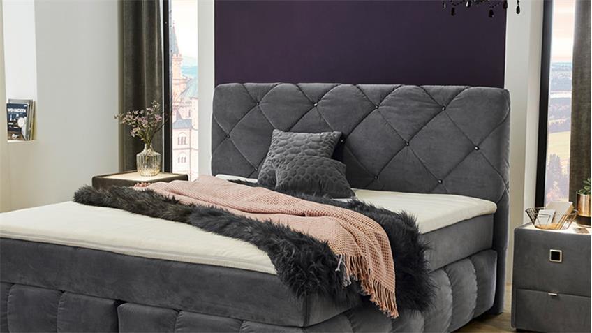 Boxspringbett BELLAS Bett Schlafzimmerbett in samt grau mit Topper 180
