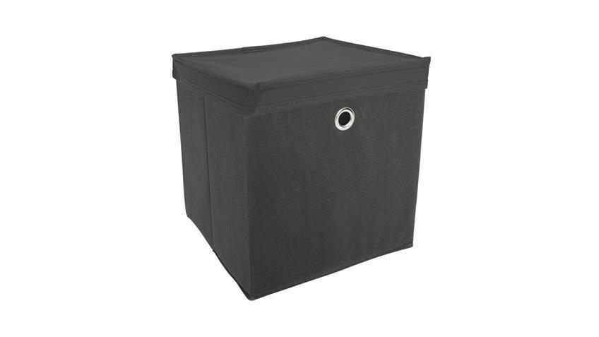 Faltbox KUBUS Set mit Deckel Regalkorb anthrazit Raumteiler