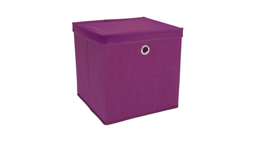 Faltbox KUBUS Set mit Deckel Regalkorb lila Raumteiler