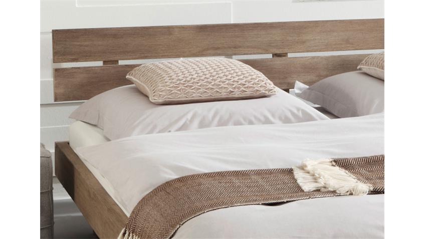 bett guru 6691 akazie massiv stone von wolf m bel. Black Bedroom Furniture Sets. Home Design Ideas