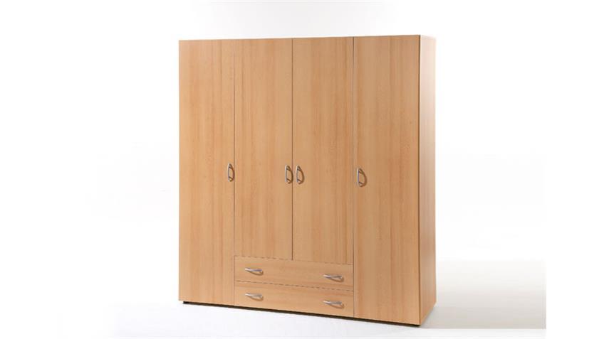 kleiderschrank base 4 in buche dekor 4 t rig 160 cm breit. Black Bedroom Furniture Sets. Home Design Ideas